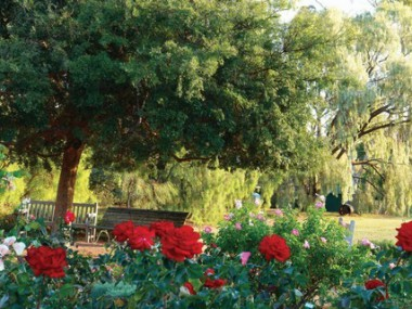English Garden Lounging